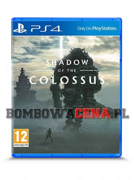 Shadow of the Colossus [PS4] PL